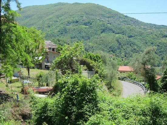 Villa Paggi Country House: Beautiful View!