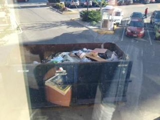 Radisson Hotel & Suites Fallsview : Dumpster View So close you can see things crawling inside