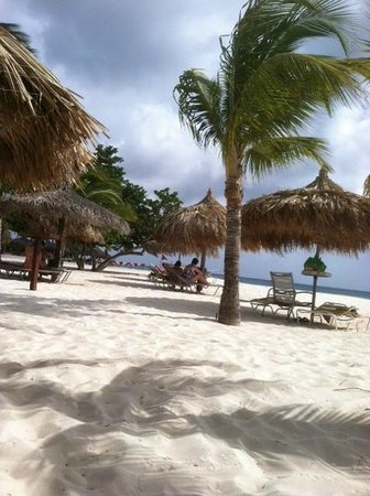 Manchebo Beach Resort & Spa: Beach area and water is approx. 20 yards away