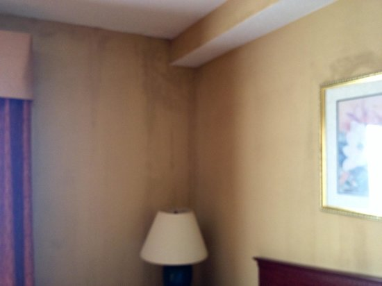 Comfort Suites Airport: Walls