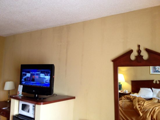 Comfort Suites Airport: Another wall