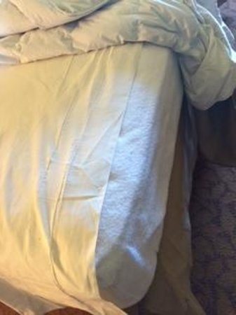 Lansdowne Resort and Spa: Bottom sheet does not even fit the mattress