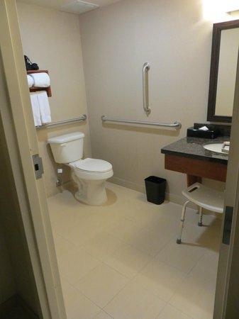 Holiday Inn Express Hampton Coliseum Central: Badezimmer