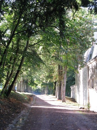 Le Château de Fontenay : A lovely huge garden to wander around