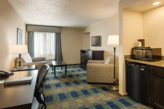 Comfort Inn & Suites Conference Center: One-Bedroom Suite Living Room