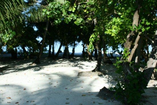 Meeru Island Resort & Spa : vue de notre beach villa