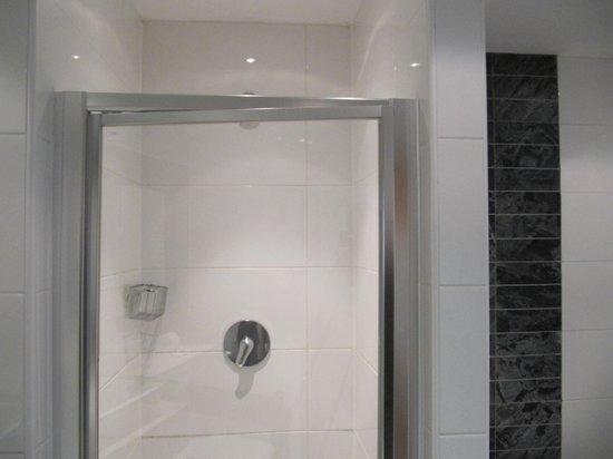 Lancaster House: Shower