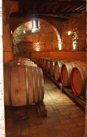 MsnRelais Rocca di Castagnoli: de wijnkelder.