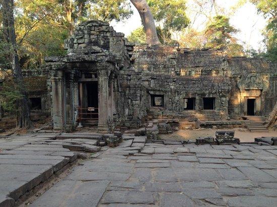 Peace of Angkor Tours: Ta Prohm