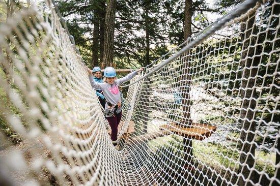 Val-des-Monts, Kanada: Filet dans les arbres