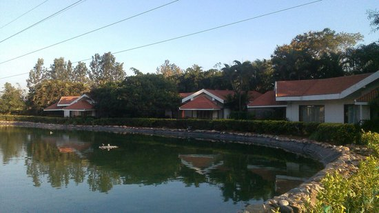 Silent Shores Resort & Spa : Cottages surrounding the lake