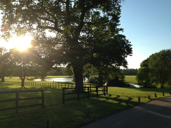 Coworth Park - Dorchester Collection : Glorious evening walks
