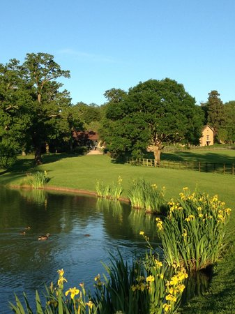 Coworth Park - Dorchester Collection : Walk in the grounds