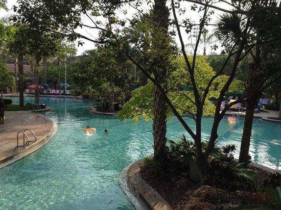 JW Marriott Orlando, Grande Lakes : JW Pool