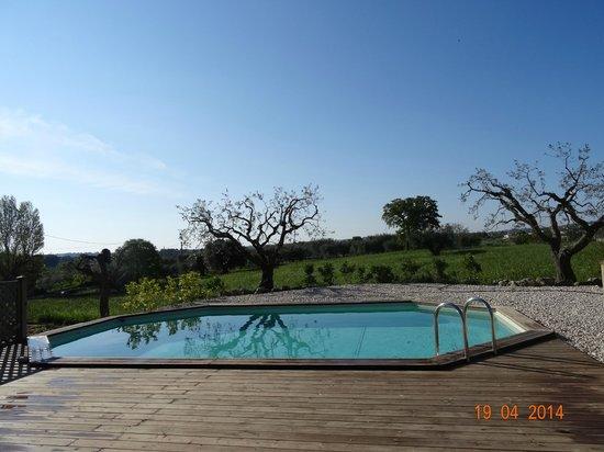 Trulli Colarossa Bed & Breakfast: het zwembad op het domein Trulli Colarossa