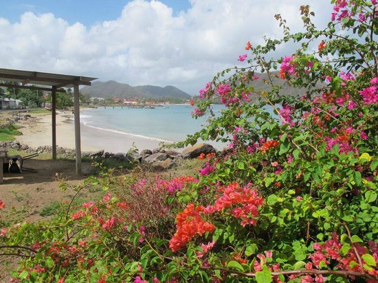 Bay Guesthouse : Right beside The Bay Guest House - a gorgeous beach
