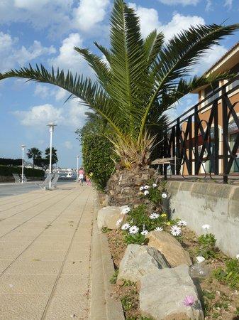 FERGUS Tobago: En allant vers l'hôtel