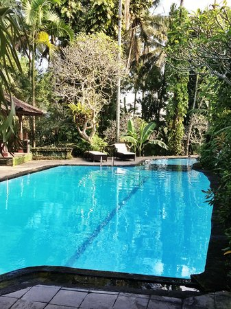 Ananda Cottages: Swimming pool