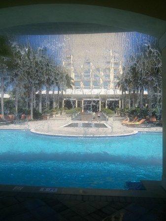 Hyatt Regency Coconut Point Resort & Spa: Waterfall in pool area