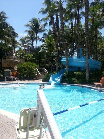 Hyatt Regency Coconut Point Resort and Spa: Kid area of the pool with waterslide