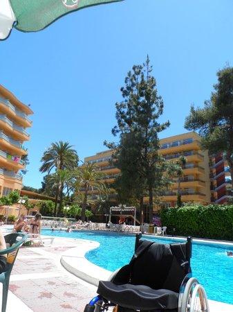 MedPlaya Hotel Calypso: on pool side