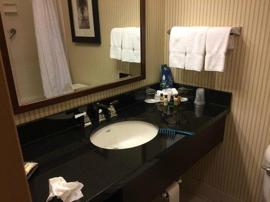 Sheraton Harrisburg-Hershey: room
