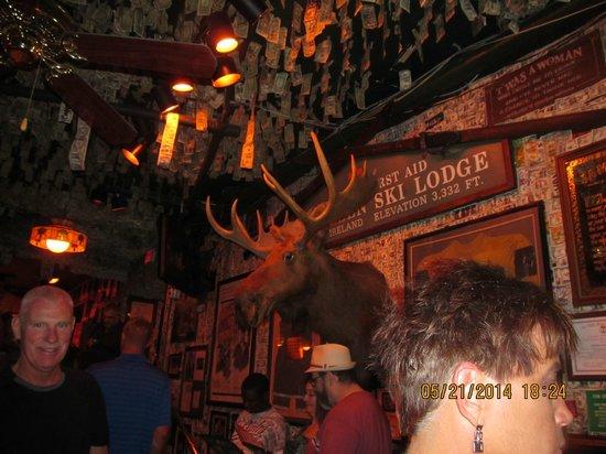 McGuire's Irish Pub: Moose head