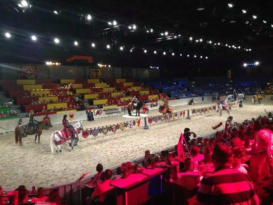 Medieval Times: The tournament.