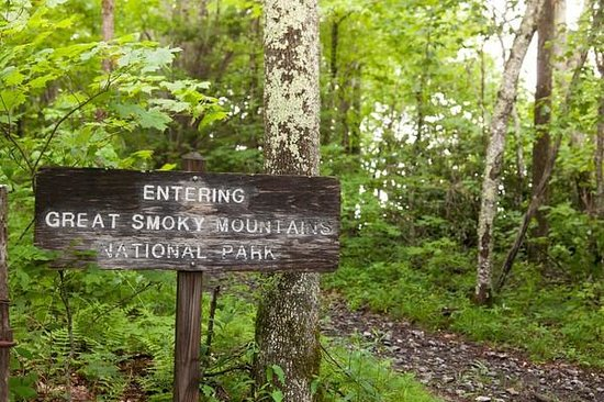 The Swag: Great Smoky Mountains National Park