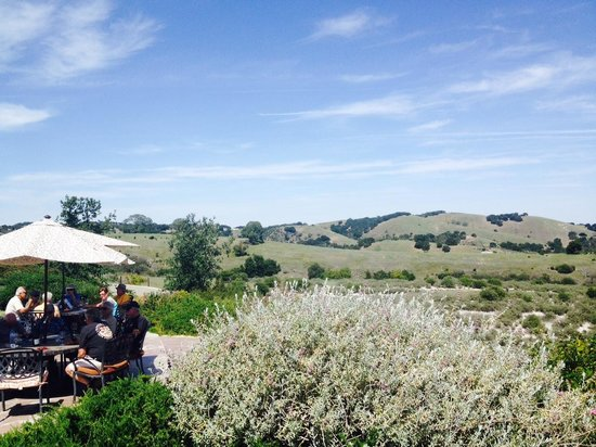 Calcareous Vineyard: View from the picnic area