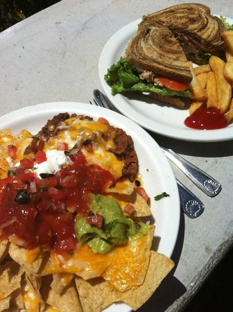 Whale Watchers Cafe: Nachos and tuna salad sandwich ... both very good