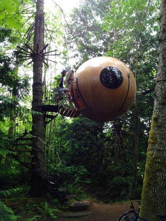 Free Spirit Spheres: Eryn sphere