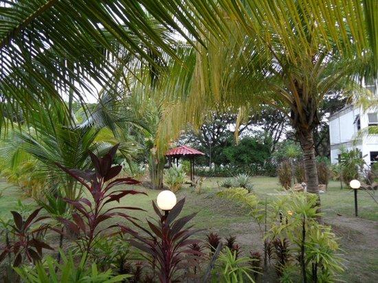 White Lodge Motel: Jardin de l'hôtel