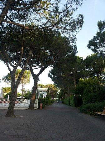 Italy Camping Village: viale centrale-zona piscina