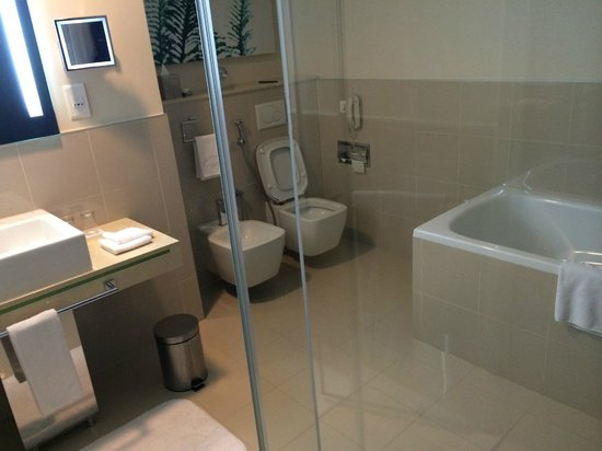 Traders Hotel, Qaryat Al Beri, Abu Dhabi: Bathroom