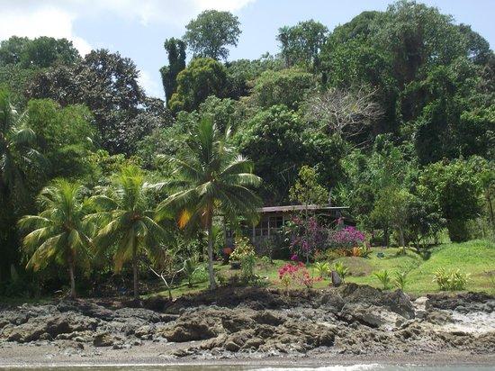 Jinetes de Osa Hotel: jardin