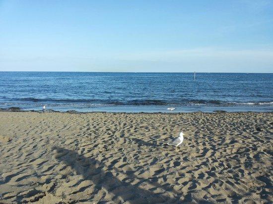 Italy Camping Village: spiaggia verso sera