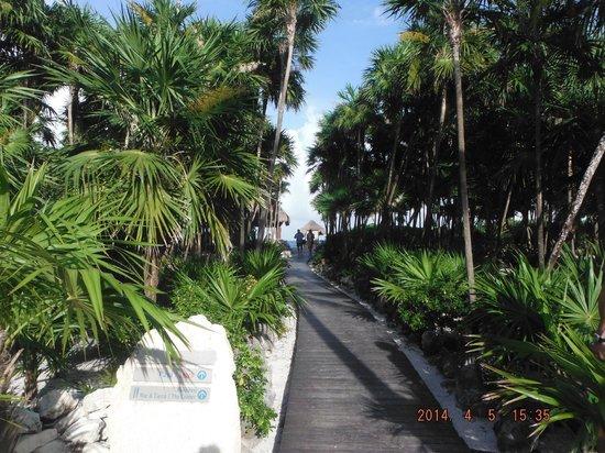 Valentin Imperial Maya: Walkway to the beach