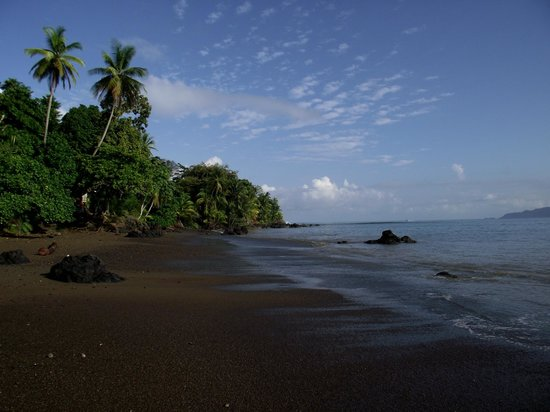 Jinetes de Osa Hotel: plage devant l hotel