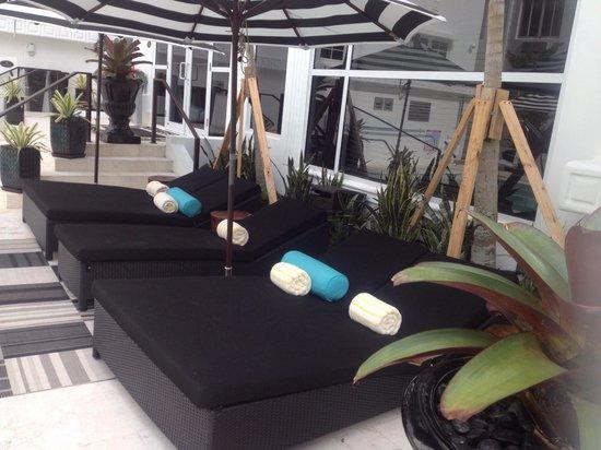 Hotel Croydon: Pool