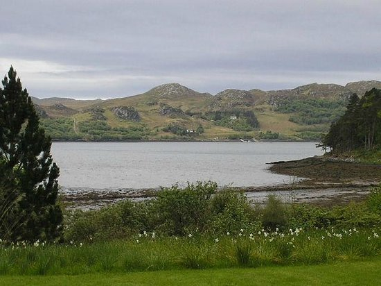 View from Inverewe gardens