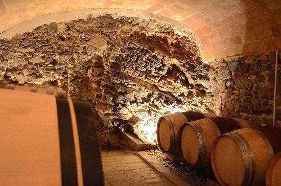 Cal Llop: Sao del Coster's cellar