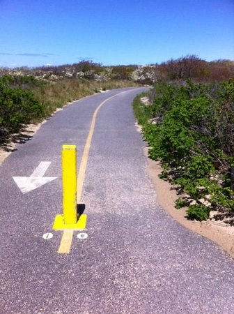 Cape Cod Provincelands Trail : Start of the trail, end of 2nd parking lot