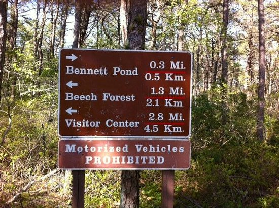 Cape Cod Provincelands Trail: Directional sign 1