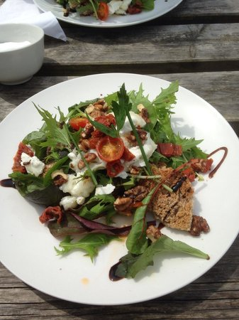 Fat Apples Cafe: Warm goats cheese salad. Yum