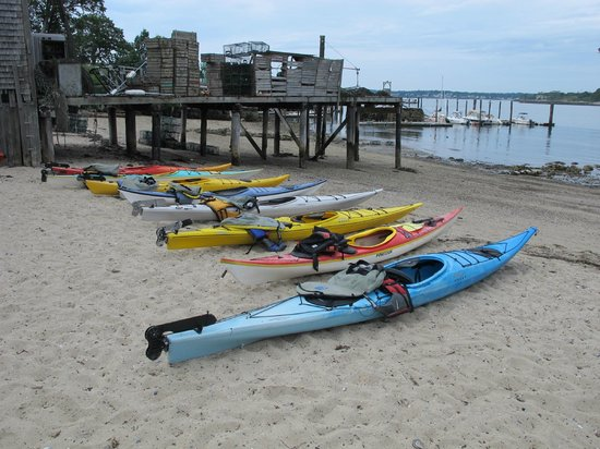 Maine Island Kayak Company: Kayaks awaiting the group based on our sizes...