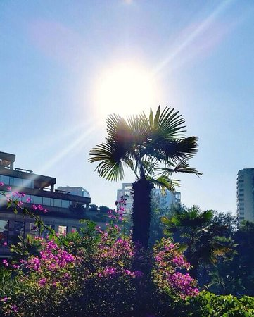 Hotel Santiago: Taking the sun at the Garden!