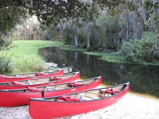 JW Marriott Orlando, Grande Lakes : Shingle Creek Canoe Rides