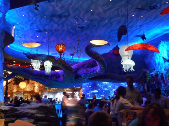 T Rex  Aquarium room with giant squid. Aquarium room with giant squid   Picture of T Rex  Orlando