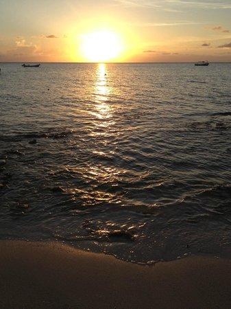 Iberostar Cozumel : Sunset on the Beach